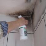 Как правильно избавиться от плесени в ванной — полезные советы